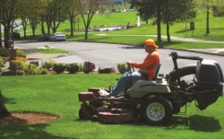 image_resized_mower_may
